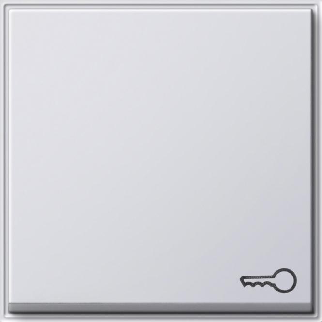 GIRA 028766 Wippe mit Symbol -Tür- Reinweiß