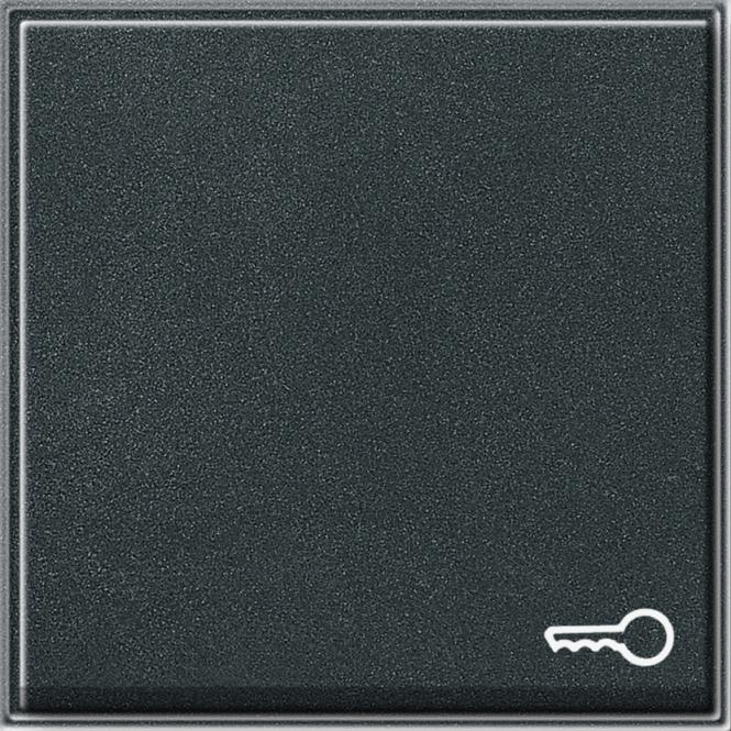 GIRA 028767 Wippe mit Symbol -Tür- Anthrazit