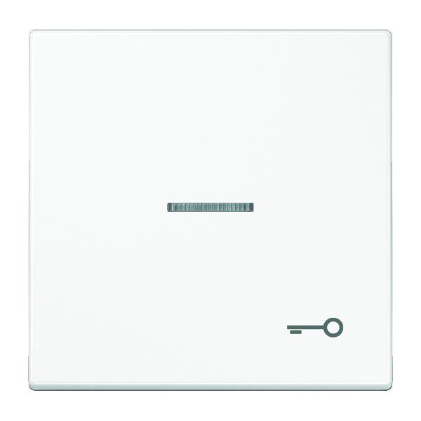 jung ls 990 ko5 t ww wippe mit symbol t r mit lichtleiter alpinwei online kaufen im voltus. Black Bedroom Furniture Sets. Home Design Ideas