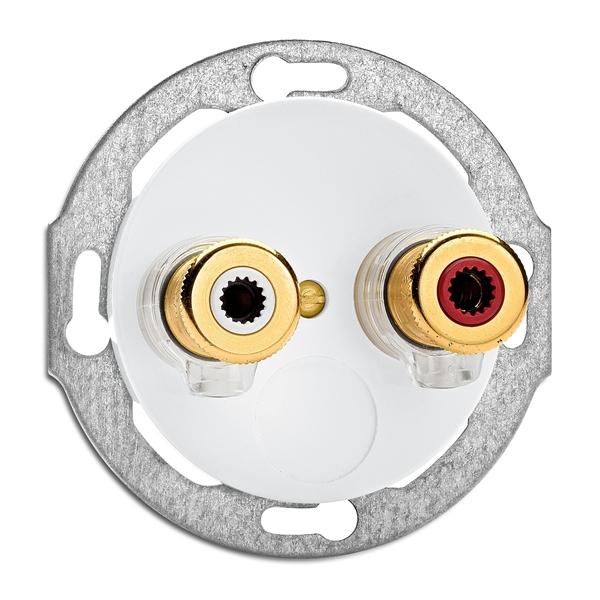 THPG 100742 Lautsprecheranschlußdose WBT nextgen Porzellan