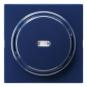 GIRA 029046 Wippe mit Kontrollfenster Blau