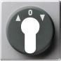 GIRA 0664203 Abdeckung für Schlüsselschalter und Schlüsseltaster