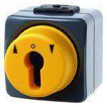 BERKER 4391 Jalousie Schlüsseltaster für  Profil Halbzylinder 1-polig mit Aufdruc