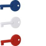 HAGER RXE02D Ersatzschlüssel für RFM200D/TG558x/16x-27D