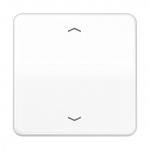 """JUNG CD 1700 P WW Steuertaste Standard mit Symbol """"Pfeile"""" Alpinweiß glänzend"""