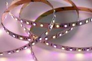 VOLTUS 30175 LED RGB+WW Strip, 24V,IP20  CRI>80, Teilbar alle 20cm, 5m Rolle 5m Rolle