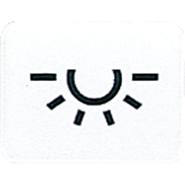 JUNG 33LWW Symbol Licht/Alpinweiß online kaufen im Voltus Elektro Shop