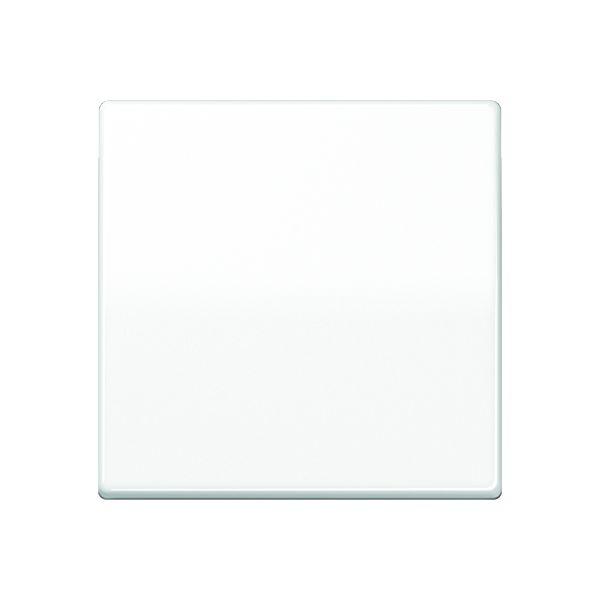 jung as 591 ww wippe f r schalter tastschalter und taster alpinwei gl nzend online kaufen im. Black Bedroom Furniture Sets. Home Design Ideas