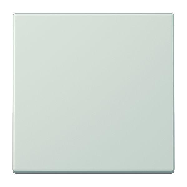 jung tastdimmer abdeckung lichtgrau online kaufen im voltus elektro shop. Black Bedroom Furniture Sets. Home Design Ideas