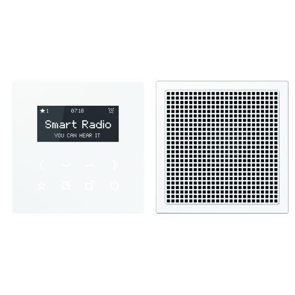 jung radls918ww smart radio mit display set mono. Black Bedroom Furniture Sets. Home Design Ideas