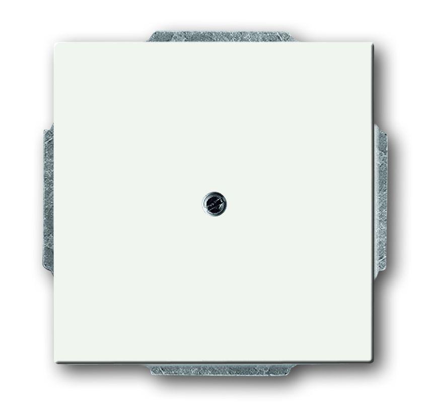 busch jaeger 1742 884 blindzentralscheibe mit tragring studiowei matt online kaufen im voltus. Black Bedroom Furniture Sets. Home Design Ideas