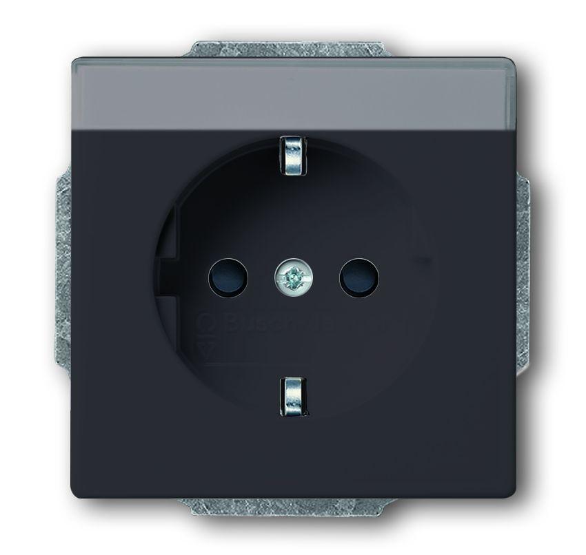 busch jaeger 20eun 81 schuko steckdosen einsatz mit beschriftungsfeld anthrazit online kaufen im. Black Bedroom Furniture Sets. Home Design Ideas